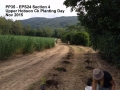 PP35 EPS24 Section 4 Planting Day Nov 2015